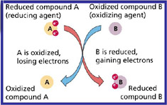 Redox Basics, reduction, oxidation