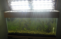 LED Strip Canopy Mounting in Aquarium with T2 Lights