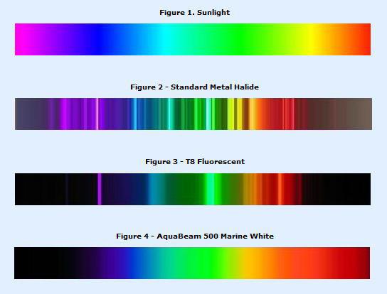 Spectrum Natural Sunlight Light Bulbs