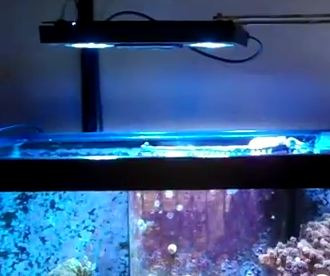 EcoTech Marine Radion Aquarium LED Lights, Lighting