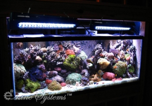 fluval led review aquarium article digest