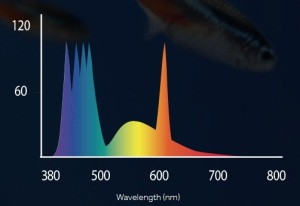 Fluvalmarinespectrum