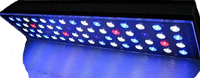 Orphek Nilus Reef Aquarium LED Light