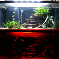 TMC Flexi-Red LED on Aquarium, Review