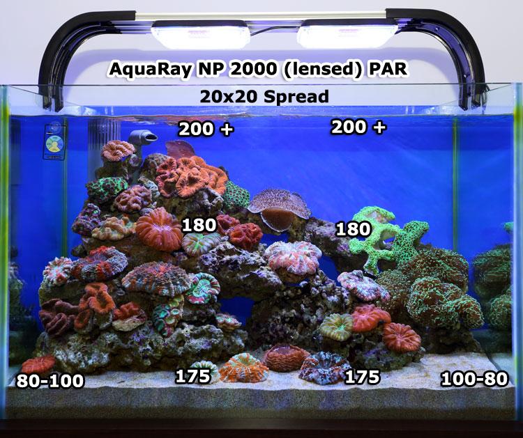 Tmc Aquabeam 2000 Hd Ultima Np Review Aquarium Article