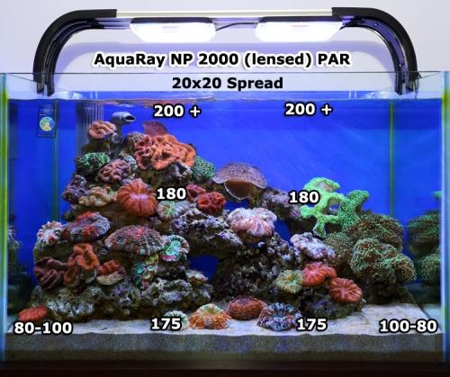 Photosynthesis And Par Planted Amp Reef Aquarium Aquarium