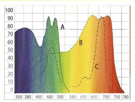 PAR, photosynthetic active radiation diagram