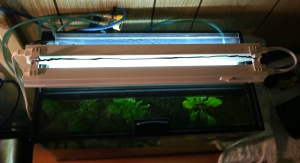 t2 Aquarium Lighted top view mounting