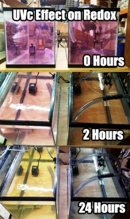 UV Removal of oxidizers in aquarium